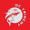 dc trident logo small
